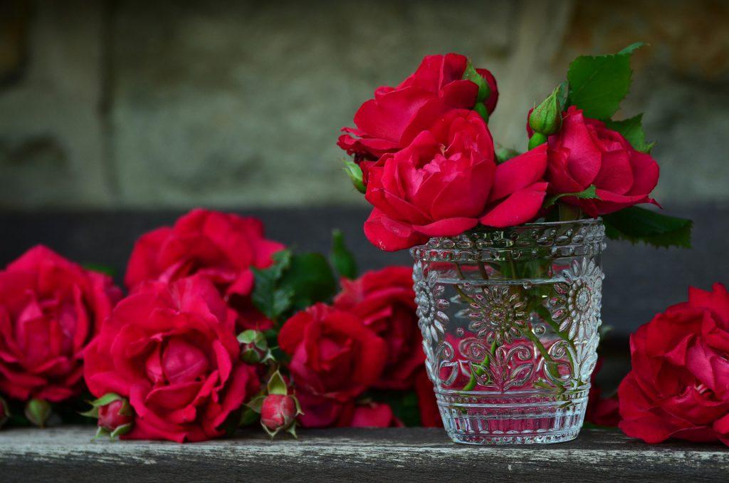 Przedłużamy trwałość kwiatów sprzedawanych w kwiaciarni