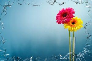 Kwiaciarnie przez Internet