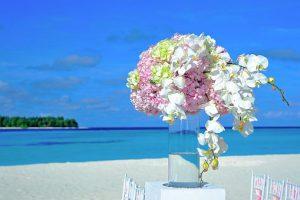 Idealny florysta – sprawdzony czy dobry?