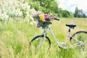 Zakładamy kwiaciarnię – ważne wskazówki