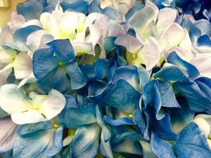 Kilka porad dla zakładających kwiaciarnie