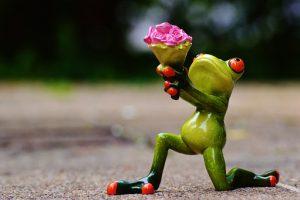 Jak kupić kwiaty swojej damie?