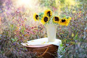 Z samych kwiatów nie wyżyjesz